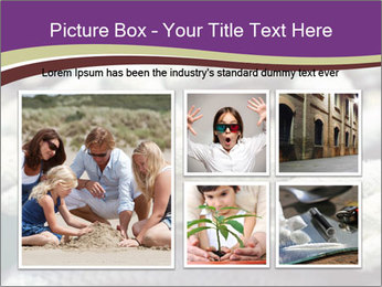0000076445 PowerPoint Template - Slide 19
