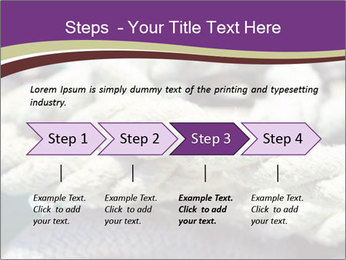 0000076445 PowerPoint Template - Slide 4