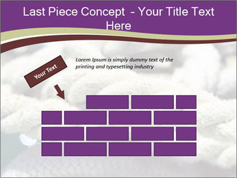 0000076445 PowerPoint Template - Slide 46