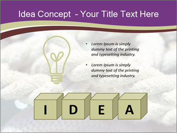 0000076445 PowerPoint Template - Slide 80