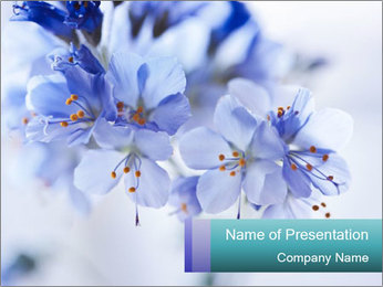 0000076454 PowerPoint Template - Slide 1