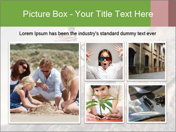 0000076470 PowerPoint Template - Slide 19