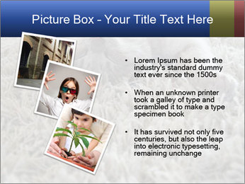 0000076499 PowerPoint Template - Slide 17