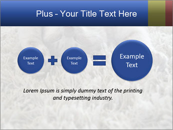 0000076499 PowerPoint Template - Slide 75