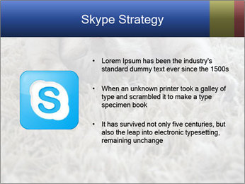 0000076499 PowerPoint Template - Slide 8