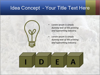 0000076499 PowerPoint Template - Slide 80