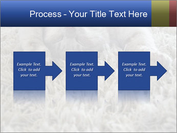 0000076499 PowerPoint Template - Slide 88