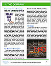 0000076501 Word Template - Page 3