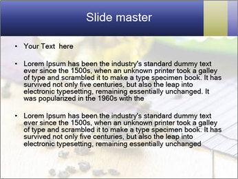 0000076504 PowerPoint Templates - Slide 2