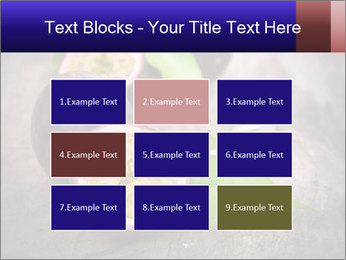 0000076506 PowerPoint Templates - Slide 68