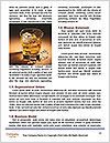 0000076508 Word Template - Page 4