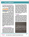 0000076510 Word Template - Page 3