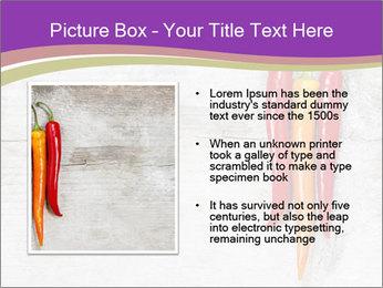 0000076513 PowerPoint Template - Slide 13