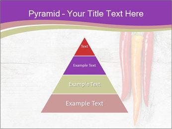 0000076513 PowerPoint Template - Slide 30