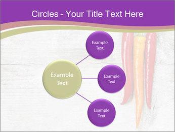0000076513 PowerPoint Template - Slide 79