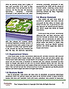 0000076518 Word Templates - Page 4