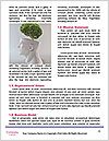 0000076523 Word Templates - Page 4