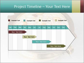 0000076529 PowerPoint Templates - Slide 25