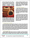 0000076529 Word Template - Page 4