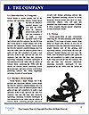 0000076533 Word Template - Page 3