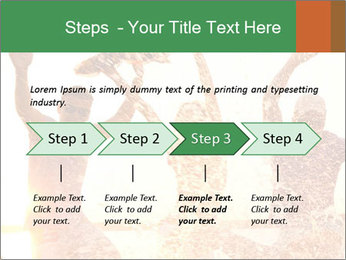 0000076541 PowerPoint Template - Slide 4