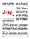 0000076545 Word Template - Page 4