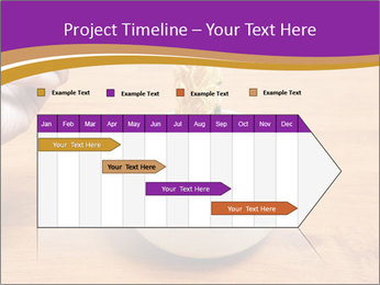 0000076546 PowerPoint Templates - Slide 25