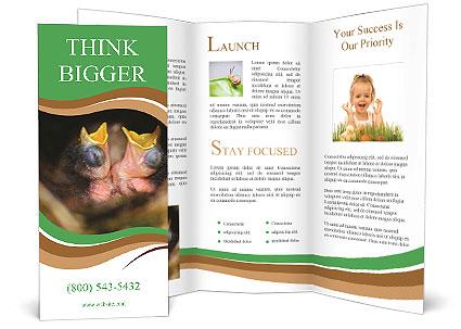 0000076553 Brochure Template