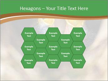 0000076553 PowerPoint Template - Slide 44