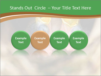 0000076553 PowerPoint Templates - Slide 76
