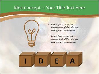 0000076553 PowerPoint Template - Slide 80