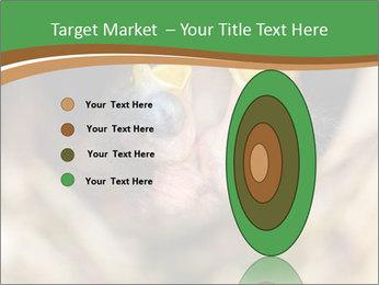 0000076553 PowerPoint Template - Slide 84