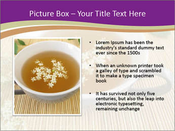 0000076562 PowerPoint Template - Slide 13