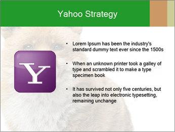 0000076565 PowerPoint Templates - Slide 11