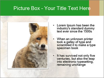 0000076565 PowerPoint Template - Slide 13