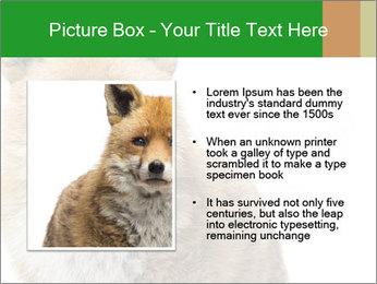 0000076565 PowerPoint Templates - Slide 13