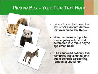 0000076565 PowerPoint Templates - Slide 17