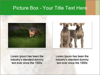 0000076565 PowerPoint Template - Slide 18