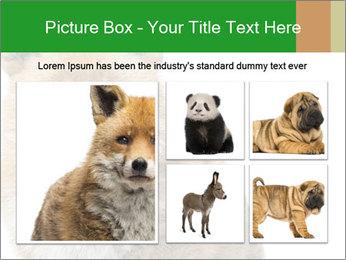 0000076565 PowerPoint Templates - Slide 19
