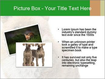 0000076565 PowerPoint Templates - Slide 20