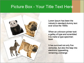 0000076565 PowerPoint Templates - Slide 23