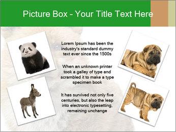 0000076565 PowerPoint Templates - Slide 24