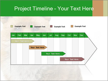 0000076565 PowerPoint Templates - Slide 25