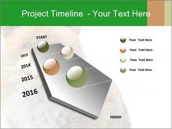 0000076565 PowerPoint Templates - Slide 26
