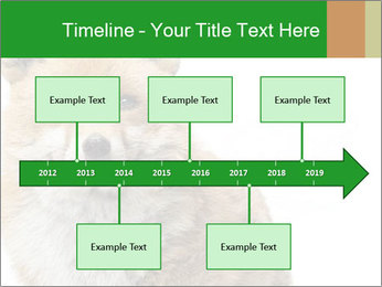 0000076565 PowerPoint Templates - Slide 28
