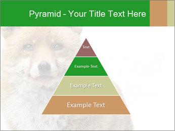 0000076565 PowerPoint Templates - Slide 30