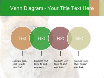 0000076565 PowerPoint Templates - Slide 32