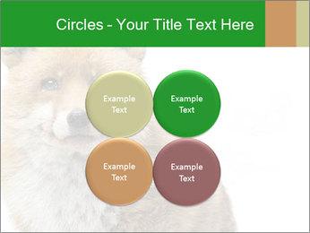 0000076565 PowerPoint Templates - Slide 38