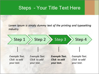 0000076565 PowerPoint Templates - Slide 4
