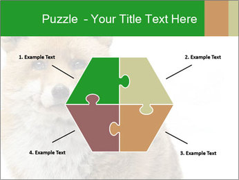 0000076565 PowerPoint Templates - Slide 40